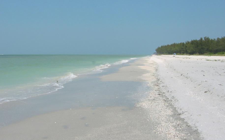 florida sanibel beach bowlands beach. Black Bedroom Furniture Sets. Home Design Ideas
